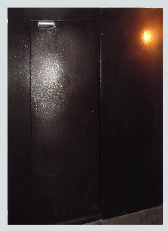 Дверь тамбурная, металлическая, полимерная